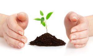 miljöledningssystem